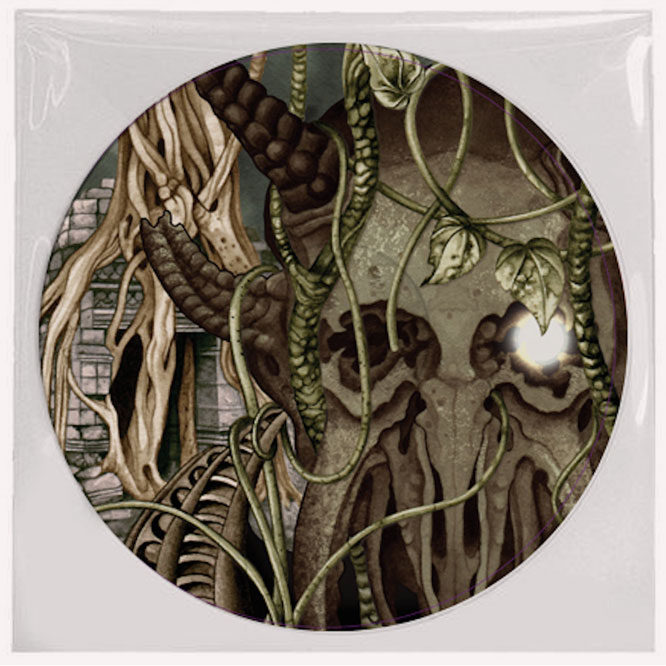 Godless Prophets & The Migrant Flora- Picture Disk back